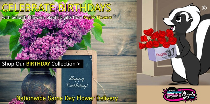 Celebrate a birthday with beautiful flowers, plants and gifts from Pugh's Flowers in Memphis TN.