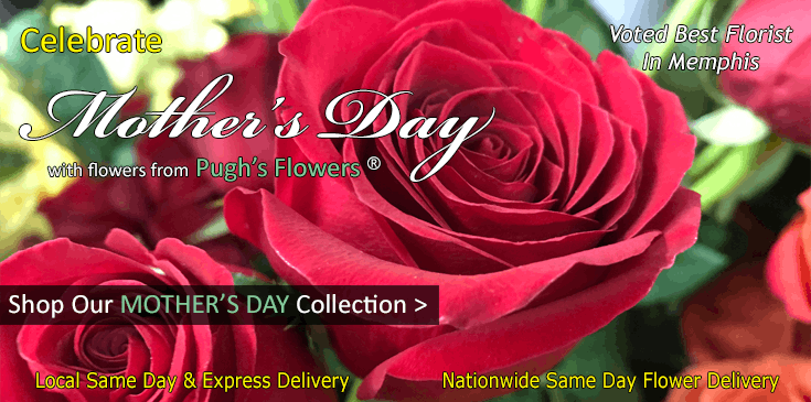 Shop Pugh's Flowers for the best selection of Mother's Day flowers, plants and gifts in Memphis TN.