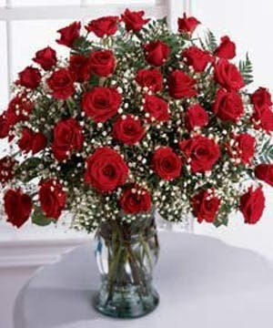 Beautiful Hand Picked Red Roses