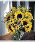 Designed Sunflowers