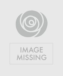 Purity in a Basket