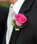 Pink Rose Bout