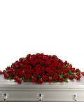 Large Red Rose Casket Cover