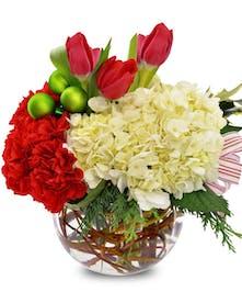 Tulips, Hydrangeas and Carnations