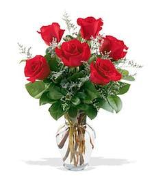 Six Long-Stemmed Roses