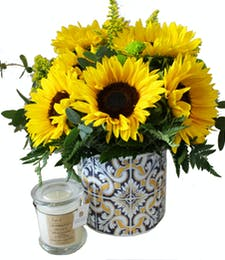 Southwest Sunflowers Set
